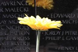 Memorial Guerra de Vietnam